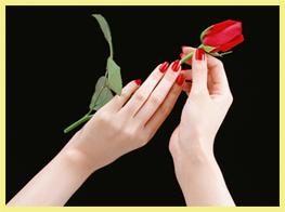 roza-v-jenskih-rukah-.jpg